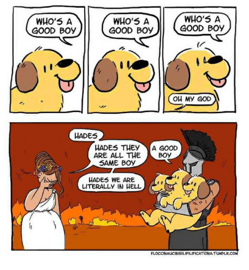 God, Oh My God, and Good: WHO'5 A  GOOD Boy  WHo'5 A  GOOD BOy  WHO'5 A  GOOD Boy  OH My GOD  HADES  HADES THEY  ARE ALL THE  SAME BOY  A GOOD  Boy  HADES WE ARE  LITERALLY IN HELL  NAUCINIHILIPILIFICATIONA