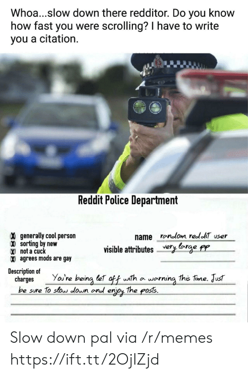 Memes, Police, and Reddit: Whoa...slow down there redditor. Do you know  how fast you were scrolling? I have to write  you a citation.  Reddit Police Department  name ronolom reololT user  X generally cool person  X sorting by new  X not a cudc  X agrees mods are gay  visible attributes very lorge pr  Description of  charges You're being let off with a worning the tine. Just  be sure To sos lown ond erjoy The poss. Slow down pal via /r/memes https://ift.tt/2OjIZjd