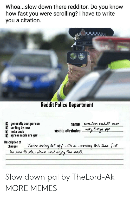 Dank, Memes, and Police: Whoa...slow down there redditor. Do you know  how fast you were scrolling? I have to write  you a citation.  Reddit Police Department  name ronolom reololT user  X generally cool person  X sorting by new  X not a cudc  X agrees mods are gay  visible attributes very lorge pr  Description of  charges You're being let off with a worning the tine. Just  be sure To sos lown ond erjoy The poss. Slow down pal by TheLord-Ak MORE MEMES