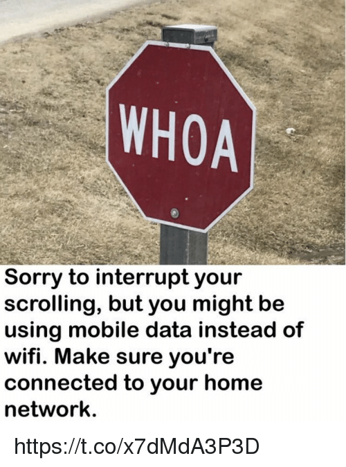 Memes, Sorry, and Connected: WHOA  Sorry to interrupt your  scrolling, but you might be  using mobile data instead of  wifi. Make sure you're  connected to your home  network. https://t.co/x7dMdA3P3D