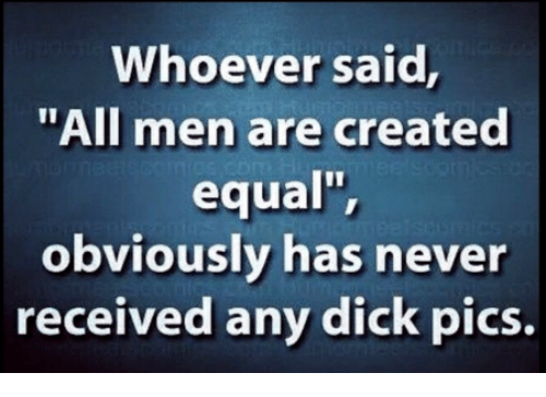"Dick Pics, Dick, and Never: Whoever said  ""All men are created  equal"",  obviously has never  received any dick pics."