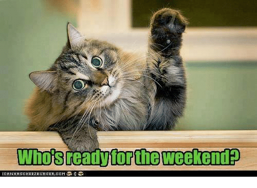 Whois Ready for the Weekend | Meme on ME.ME