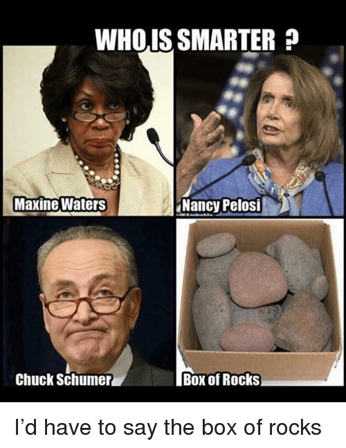 Memes, Nancy Pelosi, and 🤖: WHOIS SMARTER?  Maxine Waters  Nancy Pelosi  Chuck Schumer  Box of Rocks I'd have to say the box of rocks