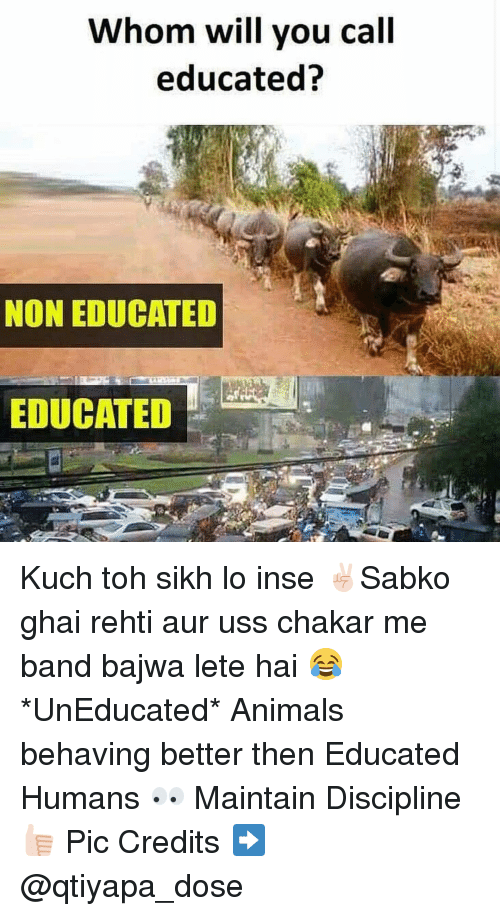 Dekh Bhai, Sikh, and International: Whom will you call  educated?  NON EDUCATED  EDUCATED Kuch toh sikh lo inse ✌🏻️Sabko ghai rehti aur uss chakar me band bajwa lete hai 😂 *UnEducated* Animals behaving better then Educated Humans 👀 Maintain Discipline 👍🏻 Pic Credits ➡️ @qtiyapa_dose