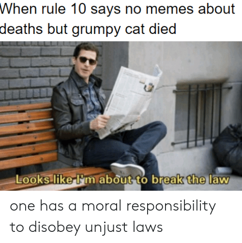 Grumpy Cat, Break, and Responsibility: Whon ruke 10 says no meos about  deaths but grumpy cat died  the  Looks liker'm about to break  law one has a moral responsibility to disobey unjust laws