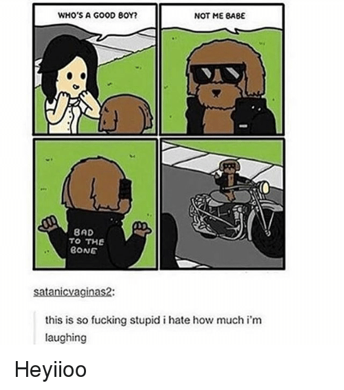 Bad, Fucking, and Tumblr: WHO'S A GOOD BOY?  NOT ME BABE  BAD  TO THE  BONE  satanicvaginas2  this is so fucking stupid i hate how much i'm  laughing Heyiioo