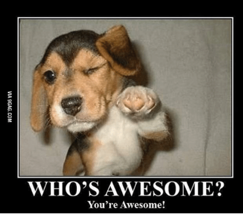 Amazing Meme: WHO'S AWESOME? You're Awesome!