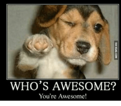Awesome Meme: WHO'S AWESOME? You're Awesome!