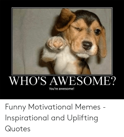 WHO\'S AWESOME? You\'re Awesome! Funny Motivational Memes ...
