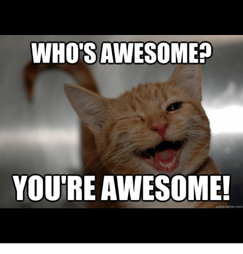 Amazing Meme: 25+ Best Memes About Whos Awesome Youre Awesome