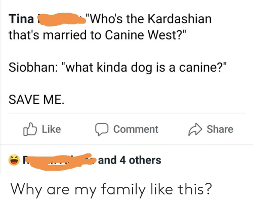 """Family, Kardashian, and Dog: """"Who's the Kardashian  Tina  that's married to Canine West?""""  Siobhan: """"what kinda dog is a canine?""""  SAVE ME  Like  Share  Comment  and 4 others Why are my family like this?"""