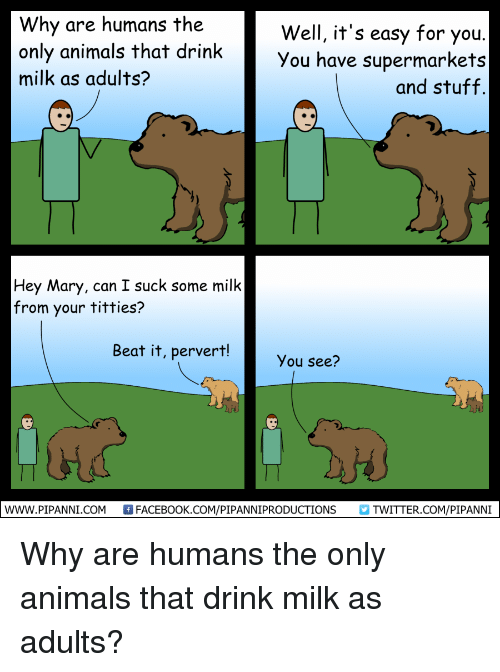 Why Are Humans the Well It\'s Easy for You Only Animals That Drink ...