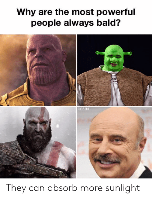 Funny, Cool, and Powerful: Why are the most powerful  people always bald?  SIVE IS COOL They can absorb more sunlight