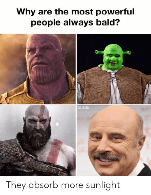 Funny, Cool, and Powerful: Why are the most powerful  people always bald?  SIVE IS COOL They absorb more sunlight