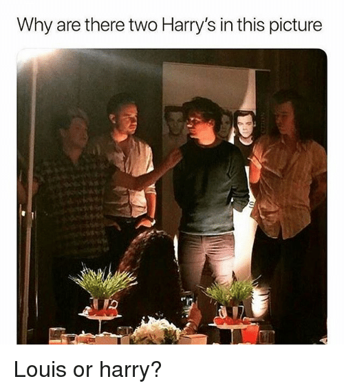 Memes, 🤖, and Harry: Why are there two Harry's in this picture Louis or harry?