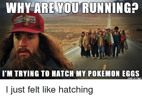 Why Are You Running Gump Itm Trying To Hatch My Pokemon Eggs Made On Imgur Pokemon Meme On Me Me