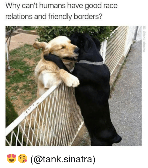 Friends, Memes, and Good: Why can't humans have good race  relations and friendly borders? 😍😘 (@tank.sinatra)
