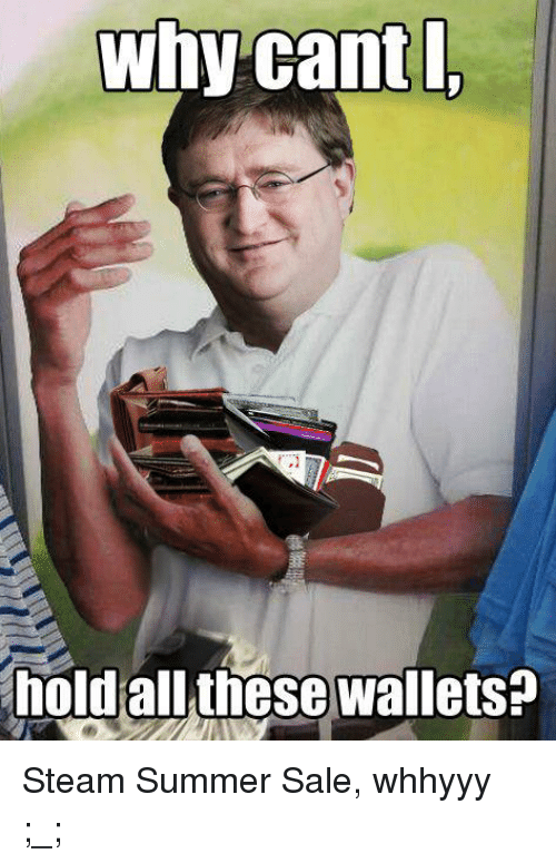 Why Cant I Hold All These Wallets Steam Summer Sale Whhyyy Meme
