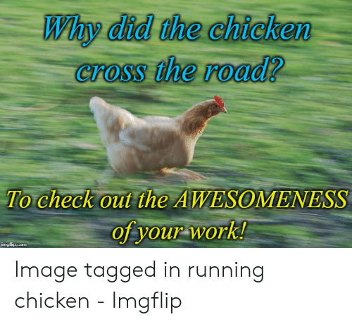 Why Did the Chicken Crossfire Roodi?-- To Check Out the AWESOMENESS
