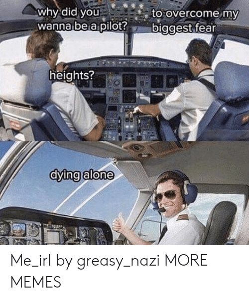 Being Alone, Dank, and Memes: why did you  wanna be a pilot?biggest fear  to overcome my  heights  dying alone Me_irl by greasy_nazi MORE MEMES