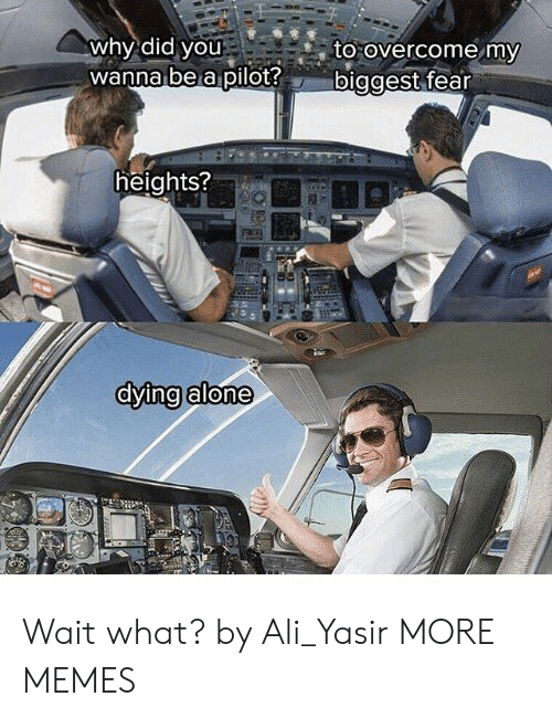 Ali, Being Alone, and Dank: why did you  wanna bea pilot?b  to overcome my  iggest fear  heights?  dying alone Wait what? by Ali_Yasir MORE MEMES