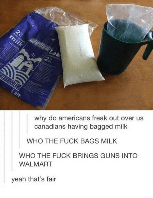 Guns, Walmart, and Yeah: why do americans freak out over us  canadians having bagged milk  WHO THE FUCK BAGS MILK  WHO THE FUCK BRINGS GUNS INTO  WALMART  yeah that's fair