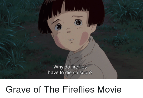why do fireflies have to die so soon grave of 22124965 ✅ 25 best memes about grave of the fireflies grave of the
