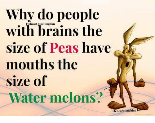 Memes, 🤖, and Melon: Why do people  Fb heart touching fun  with brains the  size of Peas have  mouths the  size of  Water melons?  FI:heart touching fu