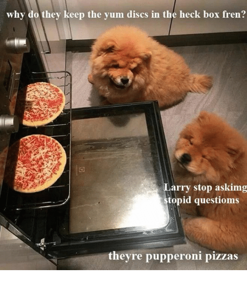 Box, Yum, and Why: why do they keep the yum discs in the heck box fren?  arry stop askimg  topid questioms  theyre pupperoni pizzas