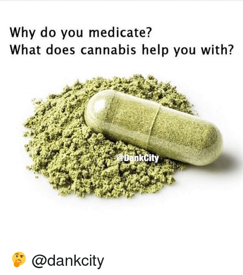 Memes, Help, and What Does: Why do you medicate?  What does cannabis help you with? 🤔 @dankcity