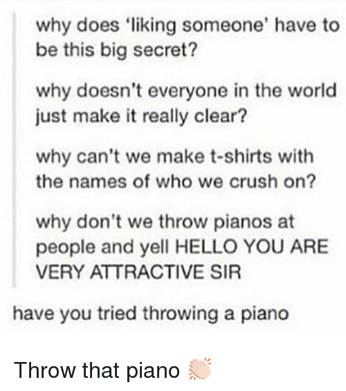 Crush, Hello, and Memes: why does liking someone' have to  be this big secret?  why doesn't everyone in the world  just make it really clear?  why can't we make t-shirts with  the names of who we crush on?  why don't we throw pianos at  people and yell HELLO YOU ARE  VERY ATTRACTIVE SIR  have you tried throwing a piano Throw that piano 👏🏻