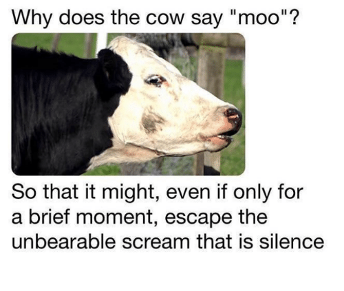 """Scream, Nihilist, and Silence: Why does the cow say """"moo""""?  So that it might, even if only for  a brief moment, escape the  unbearable scream that is silence"""