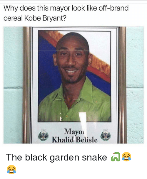 Search Mayor Memes On SIZZLE
