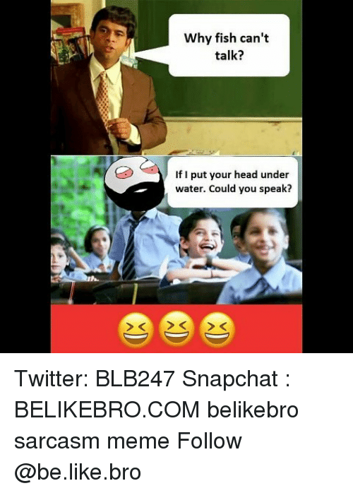 Be Like, Head, and Meme: Why fish can't  talk?  If I put your head under  water. Could you speak? Twitter: BLB247 Snapchat : BELIKEBRO.COM belikebro sarcasm meme Follow @be.like.bro