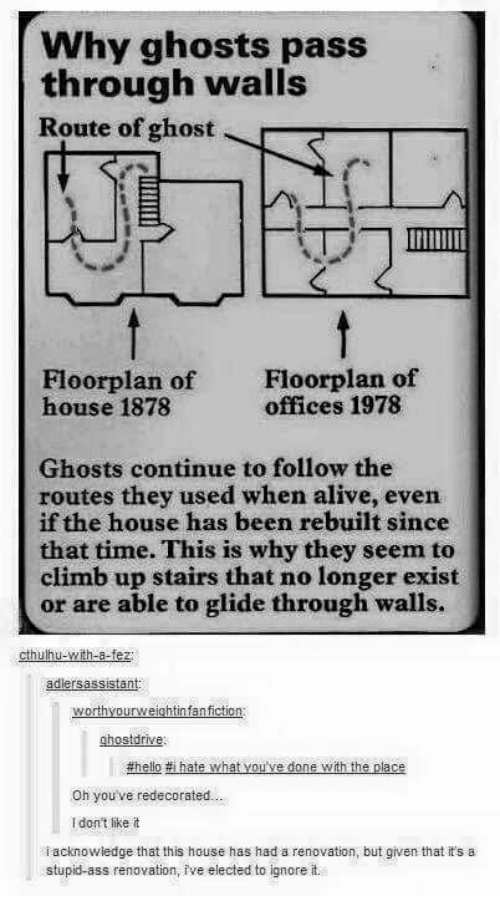 Alive, Ass, and Memes: Why ghosts pass  through walls  Route of ghost  Floorplan of  house 1878  Floorplan of  offices 1978  Ghosts continue to follow the  routes they used when alive, even  if the house has been rebuilt since  that time. This is why they seem to  climb up stairs that no longer exist  or are able to glide through walls.  adlersassistant:  worthyourweightinfanfiction  ghostdrive  Oh youve redecorated  I don't like t  i acknowledge that this house has had a renovation, but given that it's a  stupid-ass renovation, ive elected to ignore it.
