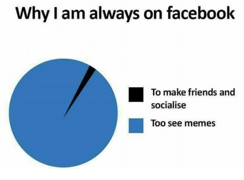 Facebook, Friends, and Memes: Why I am always on facebook  To make friends and  socialise  Too see memes