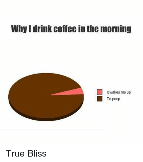 Why I Drink Coffee in the Morning It Wakes Me Up □ to Poop