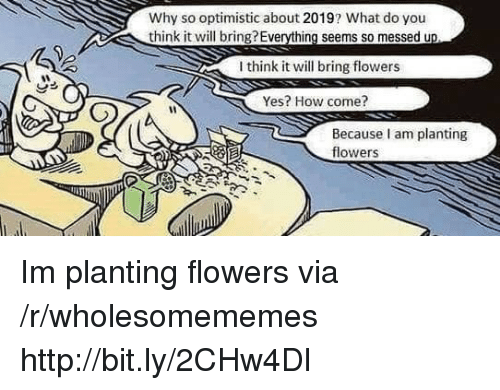 Flowers, Http, and Optimistic: Why so optimistic about 2019? What do you  think it will bring?Everything seems so messed u  I think it will bring flowers  Yes? How come?  Because am planting  flowers Im planting flowers via /r/wholesomememes http://bit.ly/2CHw4Dl