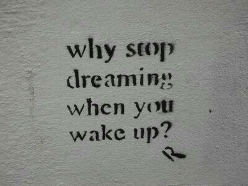 Why, Wake, and Wake Up: why stop  dreaming  when yot  wake up?