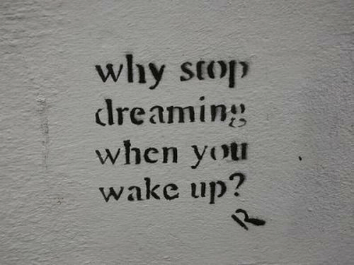 Why, Wake, and You: why stop  dreaming  when you  wake up?