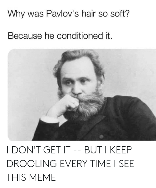 Meme, Memes, and Hair: Why was Pavlov's hair so soft?  Because he conditioned it. I DON'T GET IT -- BUT I KEEP DROOLING EVERY TIME I SEE THIS MEME