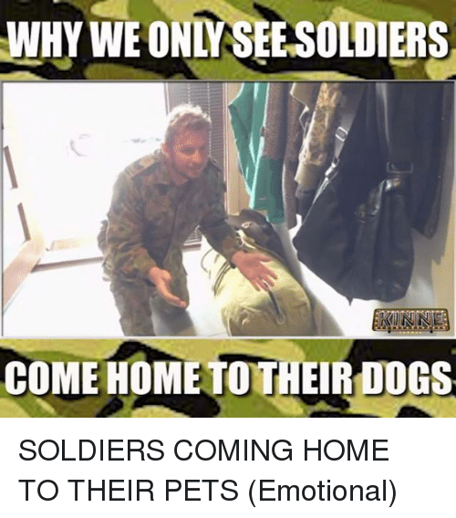 Why We Only Seesoldiers Come Home Toth Do Soldiers Coming