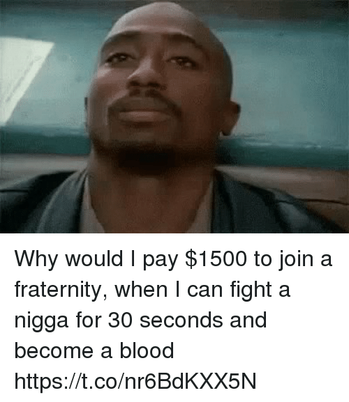 Fraternity, Memes, and Fight: Why would I pay $1500 to join a fraternity, when I can fight a nigga for 30 seconds and become a blood https://t.co/nr6BdKXX5N