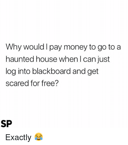 Money, Blackboard, and Free: Why would I pay money to go to a  haunted house when l can just  log into blackboard and get  cared for free?  SP Exactly 😂