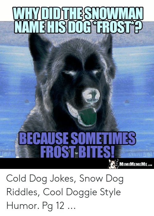 Whydidthe Snowman Name His Dog Frost Because Sometimes Frost Bites
