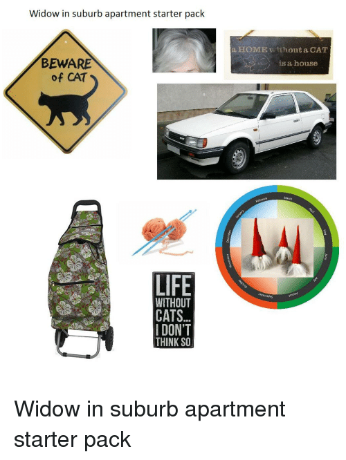 Widow In Suburb Apartment Starter Pack