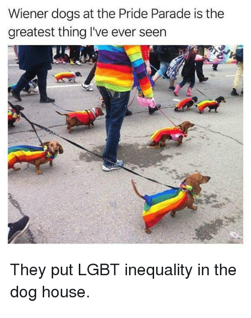 Dank, Dogs, and Lgbt: Wiener dogs at the Pride Parade is the  greatest thing I've ever seen  They put LGBT inequality in the  dog house.