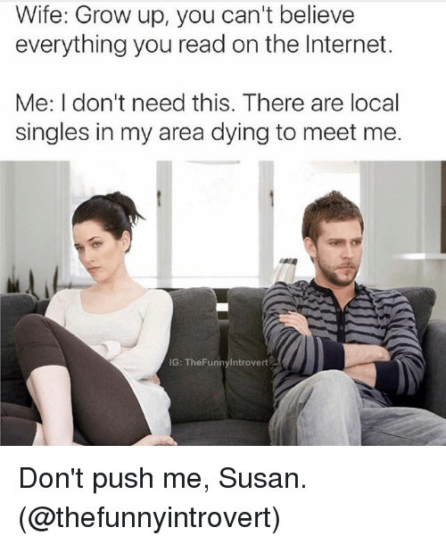Internet, Memes, and Wife: Wife: Grow up, you can't believe  everything you read on the Internet  Me: I don't need this. There are local  singles in my area dying to meet me.  IG: The Funnylntrovert Don't push me, Susan. (@thefunnyintrovert)