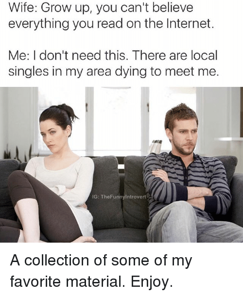 Funny, Internet, and Introvert: Wife: Grow up, you can't believe  everything you read on the Internet.  Me: I don't need this. There are local  singles in my area dying to meet me.  IG: The Funny Introvert A collection of some of my favorite material. Enjoy.