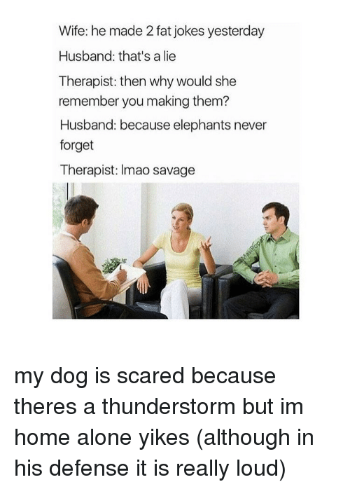 Home Alone, Memes, and Scare: Wife: he made 2 fat jokes yesterday  Husband: that's a lie  Therapist: then why would she  remember you making them?  Husband: because elephants never  forget  Therapist: Imao savage my dog is scared because theres a thunderstorm but im home alone yikes (although in his defense it is really loud)